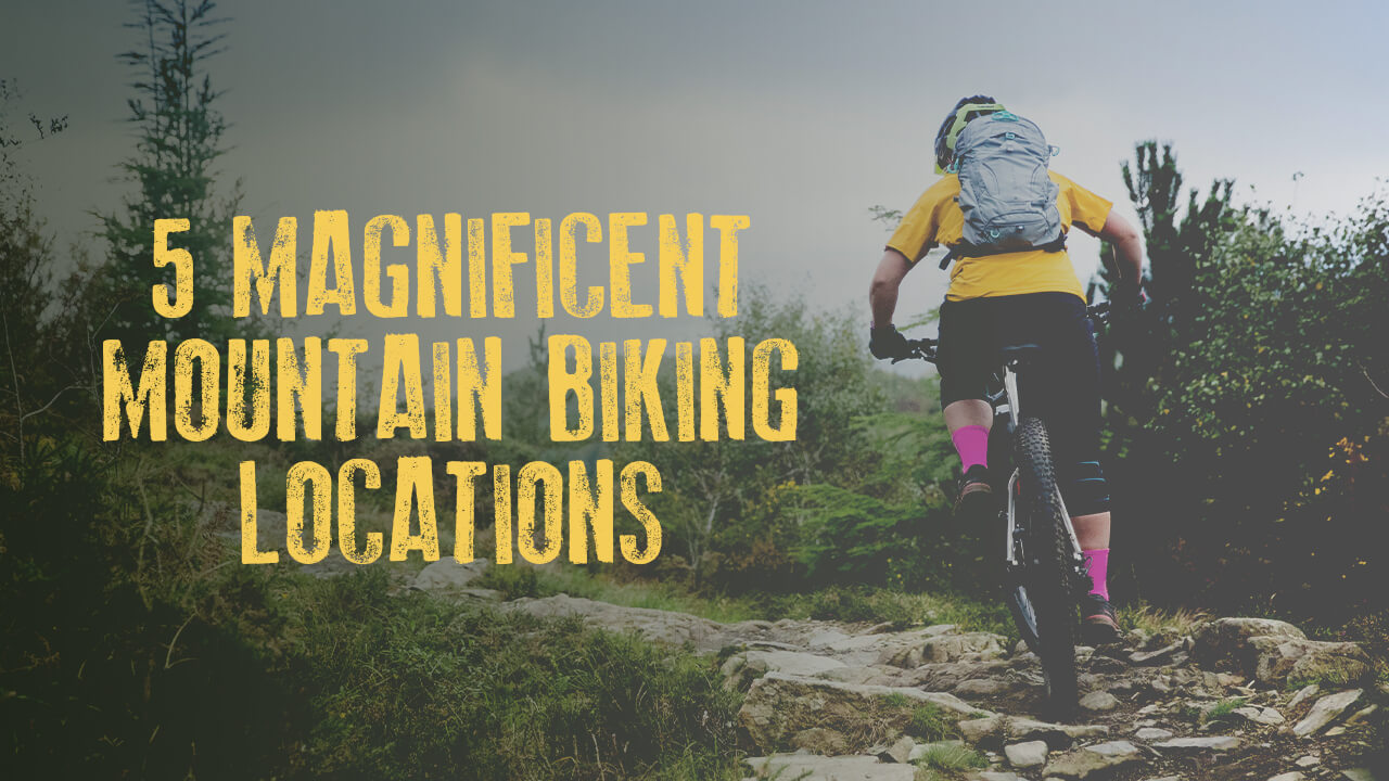 5 Magnificent Mountain Biking Locations
